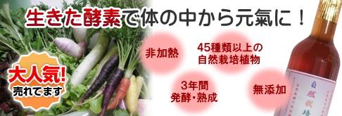 自然栽培酵素 マッシモ